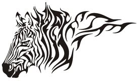 Zebra flame Stock Photography