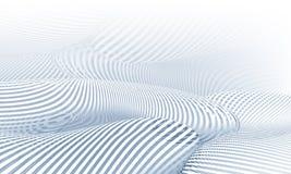 Zebra Forms Stock Photos
