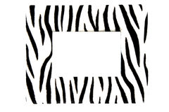 Free Zebra Frame Royalty Free Stock Photography - 6870407