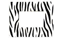 Zebra frame Royalty Free Stock Photography