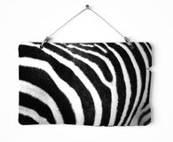 Zebra fur notice board Royalty Free Stock Images