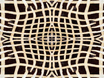Zebra fur pattern Stock Images