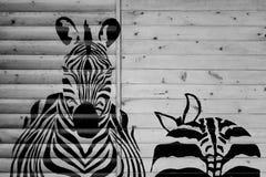 Zebra gemalt auf hölzerner Wand Stockbilder