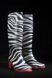 Zebra-Gummi-Stiefel Stockfotos