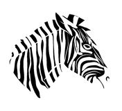 Zebra head tattoo Royalty Free Stock Photography