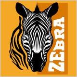 Zebra head. Vector illustration. Royalty Free Stock Images