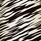 Zebra hide Stock Photography