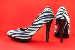 Zebra High Heel Shoes, Stock Image