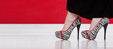 Zebra high-heeled shoes. Panoramic close-up of young womans legs in fashionable high-heeled shoes on white floor Stock Photos