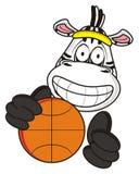 Zebra holding a basketball Royalty Free Stock Photos