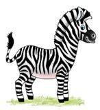 Zebra horse african zoo cartoon figure Royalty Free Stock Photos