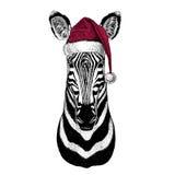 Zebra Horse Christmas illustration Wild animal wearing christmas santa claus hat Red winter hat Holiday picture Happy. Christmas illustration Wild animal wearing Stock Photography