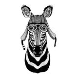Zebra Horse Wild animal wearing biker motorcycle aviator fly club helmet Illustration for tattoo, emblem, badge, logo. Wild animal wearing biker motorcycle Stock Image