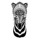 Zebra Horse Wild animal wearing indian hat Headdress with feathers Boho ethnic image Tribal illustraton. Wild animal wearing indian hat Headdress with feathers Royalty Free Stock Photo