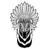 Zebra Horse Wild animal wearing indiat hat with feathers Boho style vintage engraving illustration Image for tattoo. Wild animal wearing indiat hat with feathers Stock Photos