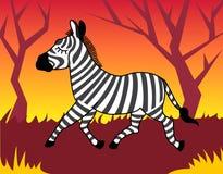 Zebra in hout Stock Foto