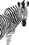 Zebra. Illustration. Royalty Free Stock Images