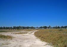 Free ZEBRA IN THE DISTANCE ON GRASSLAND IN THE SAVUTI, BOTSWANA Stock Photos - 124791883