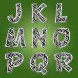 Zebra letters. Vector. Stock Photos
