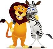 Zebra and lion Stock Photos