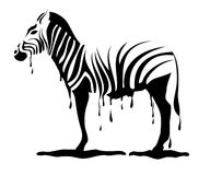 Zebra loosing its stripes in vector Stock Photos