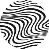 Zebra no círculo Fotografia de Stock