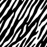Zebra (papel de parede sem emenda) Ilustração Stock