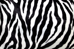 Zebra pattern Royalty Free Stock Photos