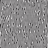 Zebra pattern. A random zebra pattern over white Royalty Free Stock Image