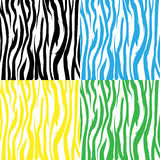 Zebra Pattern Stock Photos