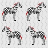 Zebra pattern with flower stripes Stock Photography
