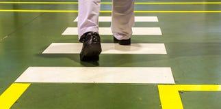Zebra pedestrian crossing Stock Images