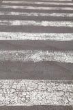 Zebra - pedestrian road Stock Image
