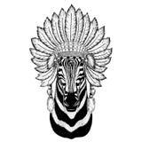 Zebra-Pferdewildes Tier tragender indiat Hut mit Federn Boho-Artweinlesestich-Illustration Bild für Tätowierung vektor abbildung