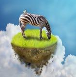 Zebra on piece of ground. Photo manipulation of grassing zebra on piece of flying ground Stock Images