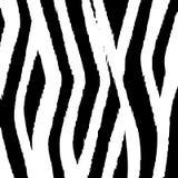 Zebra Print Stock Photography