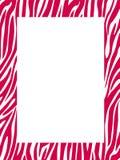 Zebra print border - colored Stock Images