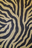 Zebra Print Tapestry. Closeup of a Zebra Print Tapestry royalty free stock images