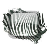 Zebra print for your design Stock Image