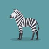 Zebra również zwrócić corel ilustracji wektora Fotografia Royalty Free