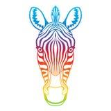 Zebra rainbow head Stock Photos