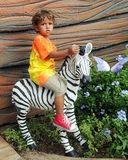 Zebra Rider Royalty Free Stock Images