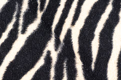 Zebra rug Royalty Free Stock Photography