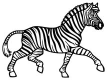 Zebra Running Royalty Free Stock Photography