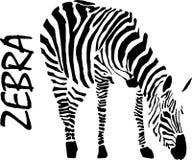 Zebra, rysunek, wektor royalty ilustracja