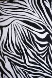 Zebra's skin. This is the zebra's skin. It's has black and white colors Stock Photo