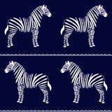 Zebra Seamless Pattern Stock Photo