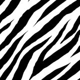 Zebra seamless pattern stock illustration
