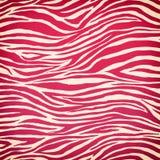 Zebra seamless pattern Royalty Free Stock Image