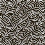 Zebra sem emenda dos testes padrões Imagem de Stock Royalty Free